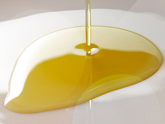 Edible oil production in the Food Industry